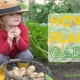 how to plan a garden for kids